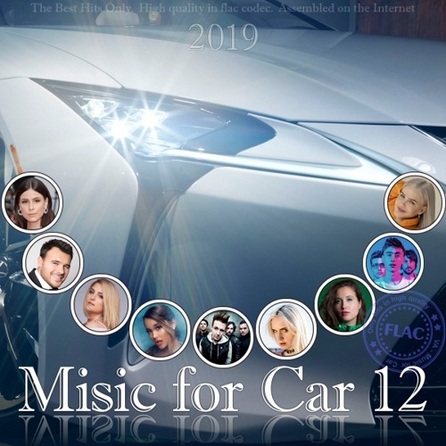 VA - Music for Car 12 (2019) FLAC
